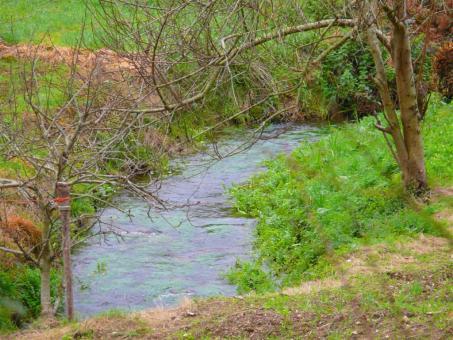 rio-ramalleira24-01-08-004-large.jpg