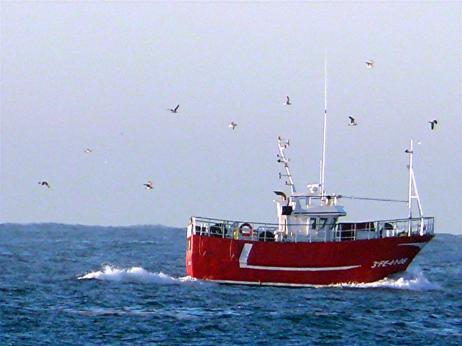 barco-camino-del-puerto-de-cedeira-frente-a-la-playa-de-o-rodo-pantin-12-12-07-123.jpg