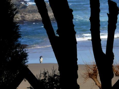 playa-de-o-baleo-pantin-21-02-08-3-024-2.jpg