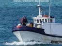 o-ardilosa-llegando-al-puerto-de-cedeira-20-02-2009-f-goiriz-051-13-large1