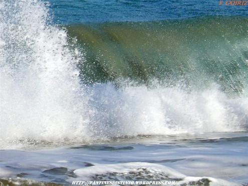 ola-rompiendo-en-la-playa-de-o-rodo-25-02-2009-f-goiriz-018-3