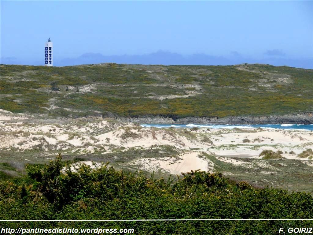 dunas-en-la-playa-de-lago-valdovino-f-goiriz-05-05-09-12