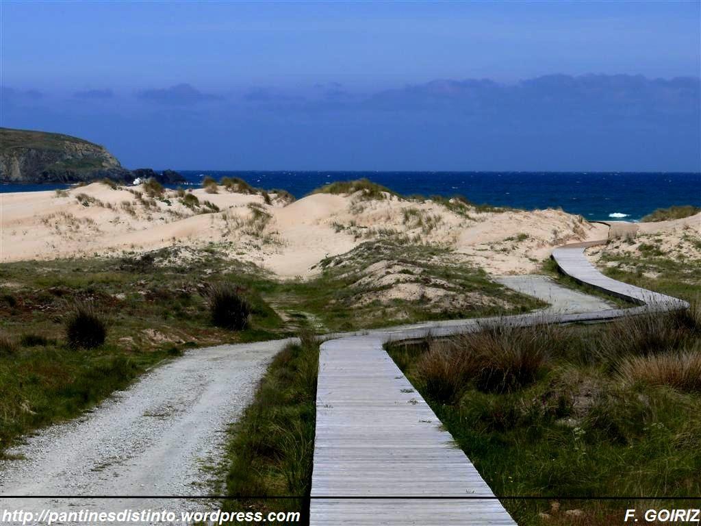dunas-en-la-playa-de-lago-valdovino-f-goiriz-05-05-09-8