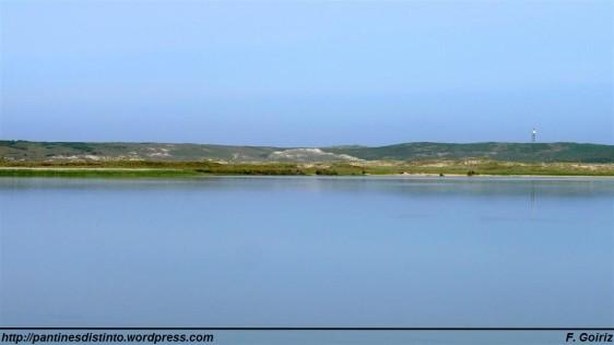 Laguna de A Frouxeira - F. Goiriz 20-05-09 (3)