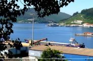 El Arion descargando en el puerto de Ferrol - ría de Ferrol - F. Goiriz (Large)