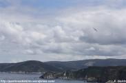 Entrada Ría de Viveiro - 2009 - f. goiriz (31)