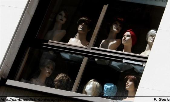 Mironas en la ventana - F. Goiriz