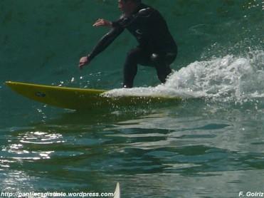 surfista - f. goiriz (2)