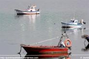 Embarcaciones a flote en con cormorán a popa desde A Ribeiroa (Barallobre - Fene) - F. Goiriz 07-09-2009 (3)