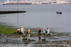 Mariscadoras de Barallobre limpiando el banco marisquero en A Ribeiroa (Barallobre - Fene) - F. Goiriz 07-09-2009 (5)