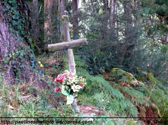 cruz de madera en el lg. de Quengo - Valdoviño-foto f. goiriz (2)