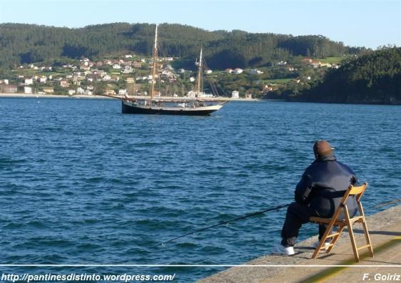 pescando en el puerto de cedeira - foto f. goiriz (2)