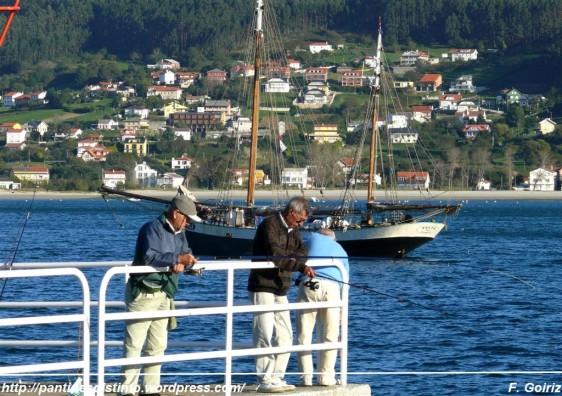 pescando en el puerto de cedeira - foto f. goiriz (3)