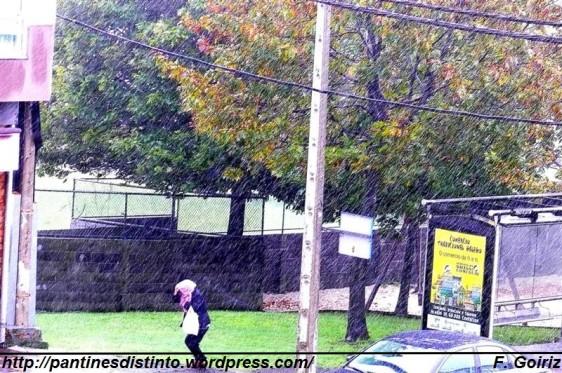 Día de viento y lluvia - 04-11-09 - foto F. Goiriz (2)