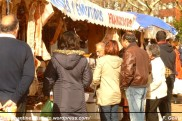 Feirón de Cedeira 08-11-2009 (3) - foto F. Goiriz