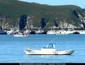 Otoño en Cedeira - fotografía, imaxe, photo, picture por Fermín Goiriz (Octubre 2010) (26)