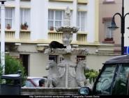 Otoño en Cedeira - fotografía, imaxe, photo, picture por Fermín Goiriz (Octubre 2010) (30)