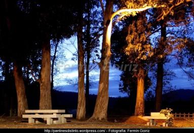 Otoño en Cedeira - fotografía, imaxe, photo, picture por Fermín Goiriz (Octubre 2010) (4)