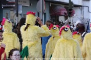 Carnaval en Cedeira 05-03-2011 - fotografía por Fermín Goiriz (51)