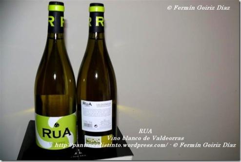 RUA - blanco de Valdeorras - 08-07-11