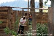 LUGNASAD 2011 - CONSTRUCCIÓN DAS CASETAS DOS CLANS - CEDEIRA 24 DE AGOSTO DE 2011 - FOTOGRAFÍA POR FERMÍN GOIRIZ DÍAZ (3)