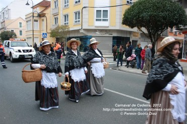 Desfile de Carnaval en Cedeira, 18 de febrero de 2012 - Carnaval Cedeira 2012 - Galicia -fotografía por Fermín Goiriz Díaz (33)