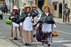 Desfile de Carnaval en Cedeira, 18 de febrero de 2012 - Carnaval Cedeira 2012 - Galicia -fotografía por Fermín Goiriz Díaz (36)