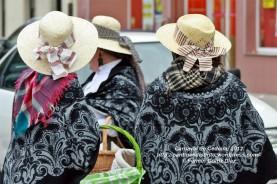 Desfile de Carnaval en Cedeira, 18 de febrero de 2012 - Carnaval Cedeira 2012 - Galicia -fotografía por Fermín Goiriz Díaz (37)