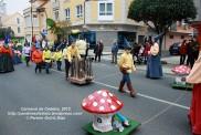 Desfile de Carnaval en Cedeira, 18 de febrero de 2012 - Carnaval Cedeira 2012 - Galicia -fotografía por Fermín Goiriz Díaz (76)