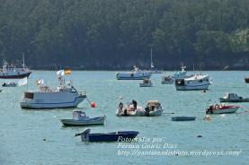 Procesión Marítima en honor de la Patrona de Cedeira - Cedeira, 16 de agosto de 2012 - fotografía por Fermín Goiriz Díaz (10)