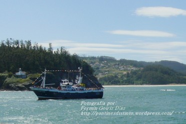 Procesión Marítima en honor de la Patrona de Cedeira - Cedeira, 16 de agosto de 2012 - fotografía por Fermín Goiriz Díaz (134)