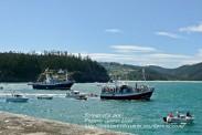 Procesión Marítima en honor de la Patrona de Cedeira - Cedeira, 16 de agosto de 2012 - fotografía por Fermín Goiriz Díaz (165)