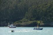 Procesión Marítima en honor de la Patrona de Cedeira - Cedeira, 16 de agosto de 2012 - fotografía por Fermín Goiriz Díaz (17)
