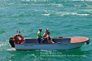Procesión Marítima en honor de la Patrona de Cedeira - Cedeira, 16 de agosto de 2012 - fotografía por Fermín Goiriz Díaz (175)