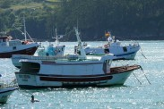 Procesión Marítima en honor de la Patrona de Cedeira - Cedeira, 16 de agosto de 2012 - fotografía por Fermín Goiriz Díaz (18)