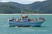 Procesión Marítima en honor de la Patrona de Cedeira - Cedeira, 16 de agosto de 2012 - fotografía por Fermín Goiriz Díaz (204)