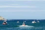 Procesión Marítima en honor de la Patrona de Cedeira - Cedeira, 16 de agosto de 2012 - fotografía por Fermín Goiriz Díaz (219)