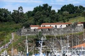 Procesión Marítima en honor de la Patrona de Cedeira - Cedeira, 16 de agosto de 2012 - fotografía por Fermín Goiriz Díaz (231)