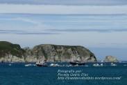 Procesión Marítima en honor de la Patrona de Cedeira - Cedeira, 16 de agosto de 2012 - fotografía por Fermín Goiriz Díaz (258)