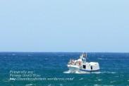 Procesión Marítima en honor de la Patrona de Cedeira - Cedeira, 16 de agosto de 2012 - fotografía por Fermín Goiriz Díaz (267)