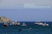 Procesión Marítima en honor de la Patrona de Cedeira - Cedeira, 16 de agosto de 2012 - fotografía por Fermín Goiriz Díaz (275)