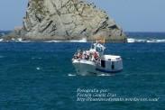 Procesión Marítima en honor de la Patrona de Cedeira - Cedeira, 16 de agosto de 2012 - fotografía por Fermín Goiriz Díaz (284)