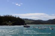Procesión Marítima en honor de la Patrona de Cedeira - Cedeira, 16 de agosto de 2012 - fotografía por Fermín Goiriz Díaz (298)