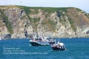 Procesión Marítima en honor de la Patrona de Cedeira - Cedeira, 16 de agosto de 2012 - fotografía por Fermín Goiriz Díaz (307)