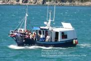 Procesión Marítima en honor de la Patrona de Cedeira - Cedeira, 16 de agosto de 2012 - fotografía por Fermín Goiriz Díaz (329)