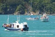 Procesión Marítima en honor de la Patrona de Cedeira - Cedeira, 16 de agosto de 2012 - fotografía por Fermín Goiriz Díaz (332)