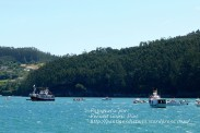Procesión Marítima en honor de la Patrona de Cedeira - Cedeira, 16 de agosto de 2012 - fotografía por Fermín Goiriz Díaz (342)