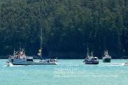 Procesión Marítima en honor de la Patrona de Cedeira - Cedeira, 16 de agosto de 2012 - fotografía por Fermín Goiriz Díaz (346)
