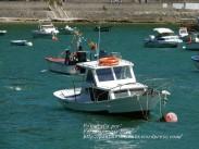 Procesión Marítima en honor de la Patrona de Cedeira - Cedeira, 16 de agosto de 2012 - fotografía por Fermín Goiriz Díaz (369)