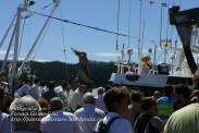 Procesión Marítima en honor de la Patrona de Cedeira - Cedeira, 16 de agosto de 2012 - fotografía por Fermín Goiriz Díaz (400)